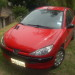 Berlina Peugeot 206 full equipo 2008