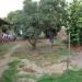 Terreno en Machala