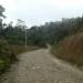 Vendo Finca de 42 hectáreas vía Tena Coca