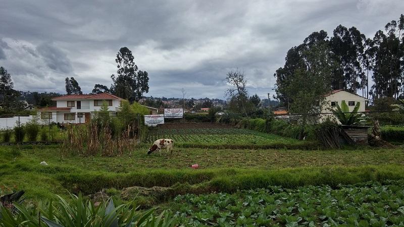 terreno de venta en Cuenca