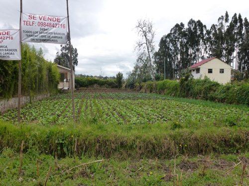 terreno en Cuenca