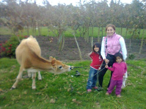 terreno-riobamba