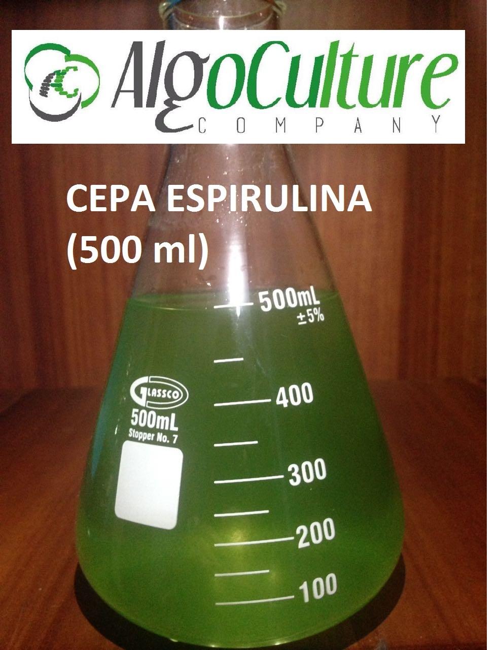 espirulina-ecuador