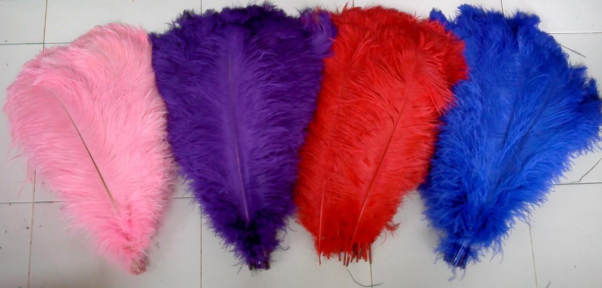 plumas de avestruz